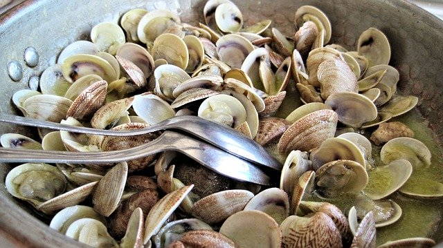 steamed clams 603110 640